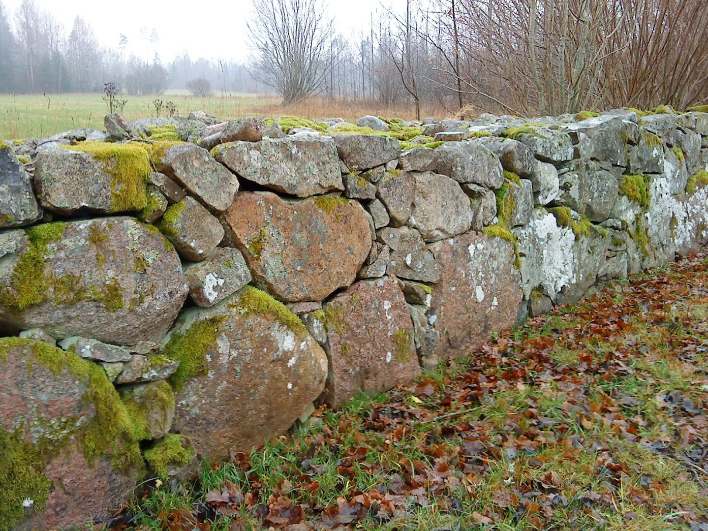 Typical Småland-ish (name province arround Lammhult) stone wall. Need to go deep to manage the ground frost in the winter.